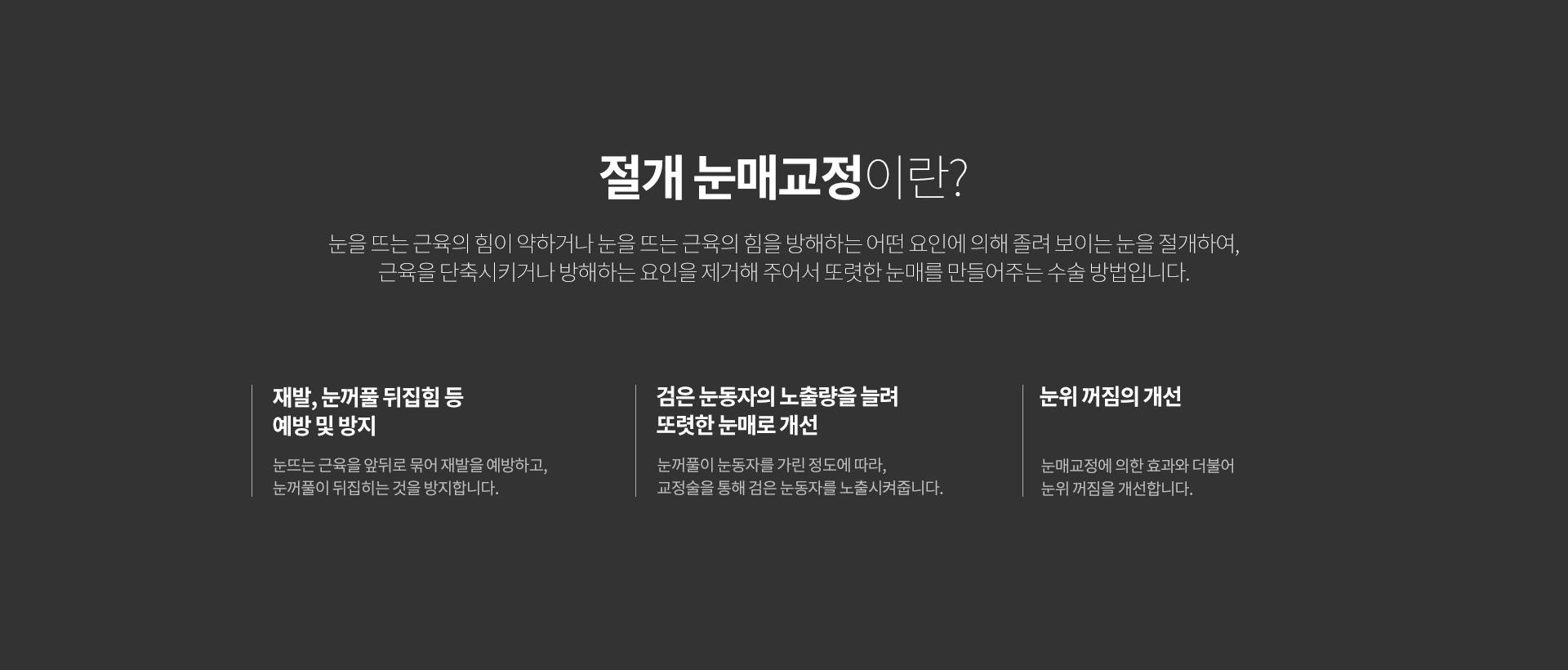 눈매교정 03