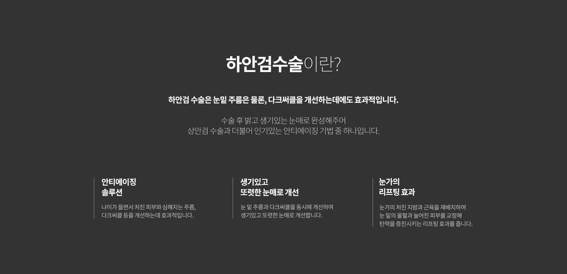 상하안검 03