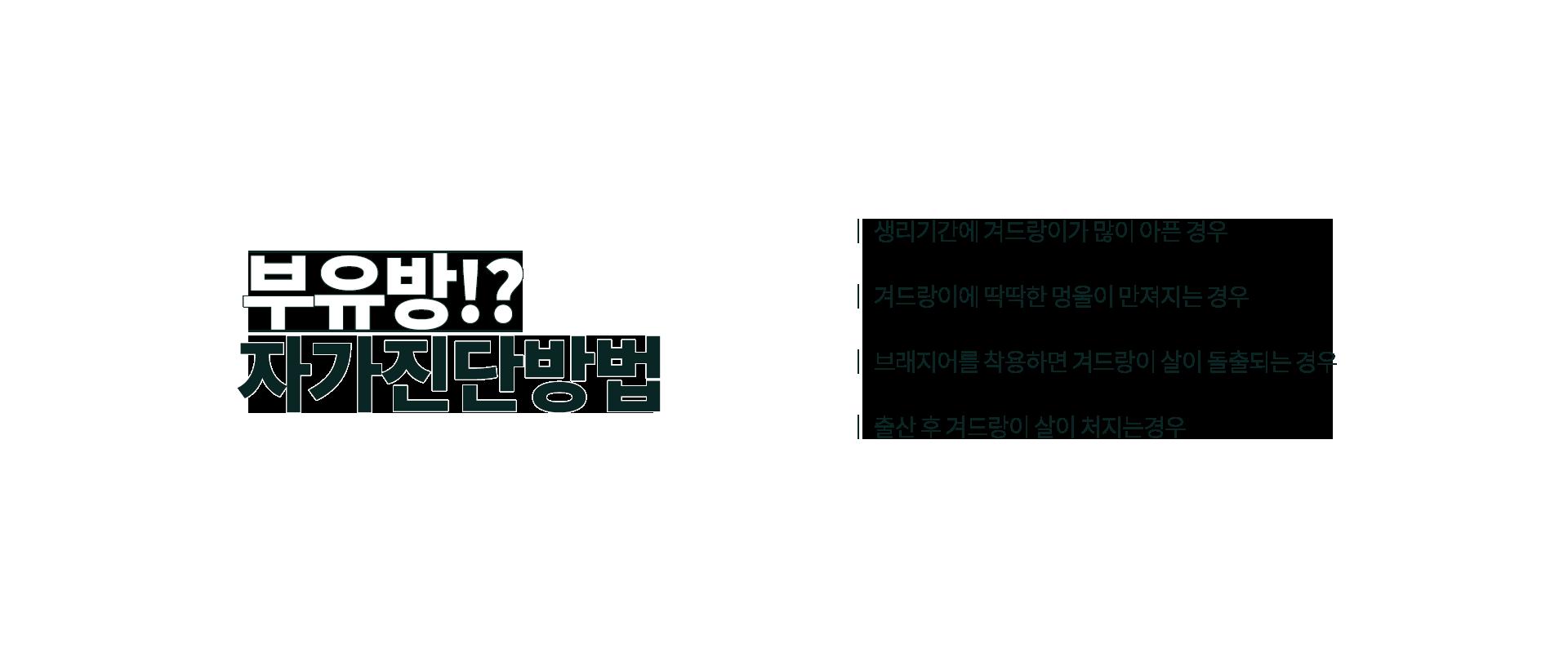 부유방 03
